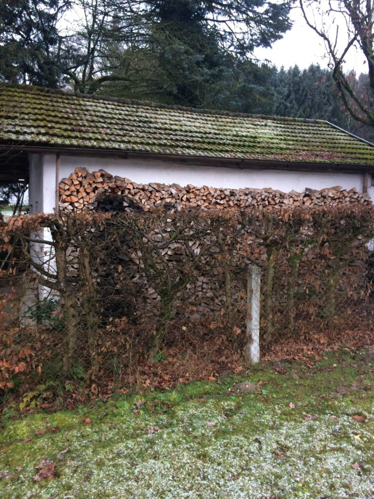 Holzfeuerung